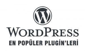 wordpress en çok kullanılan pluginleri